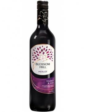 Blossom Hill Merlot - Vin Californie