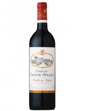 Château Chasse-Spleen - 2015 - Vin Moulis-en-Médoc