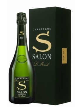 Salon Le Mesnil 2007