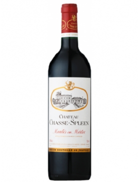 Château Chasse-Spleen - 2010
